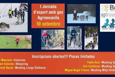 I jornada d esports amb gos Agrinovavila