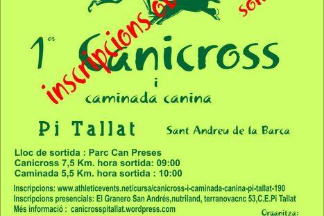 Canicross Pi Tallat