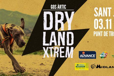 Gos Àrtic Dryland Xtrem