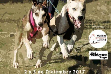 Campeonato de España de Mushing Tierra 2017 – Valladolid