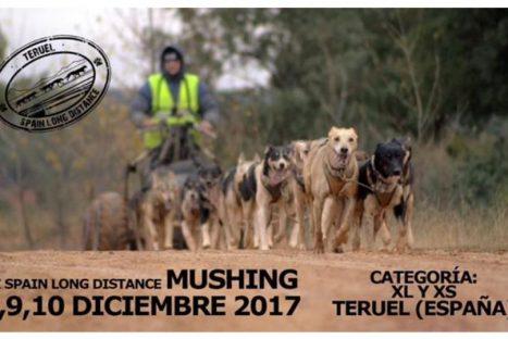 III Edició Spain Long Distance 2017 – SLD