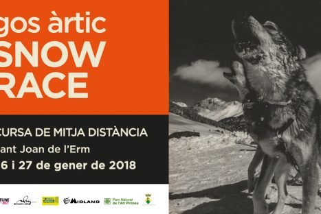 AJORNADA – Gos Àrtic Snow Race