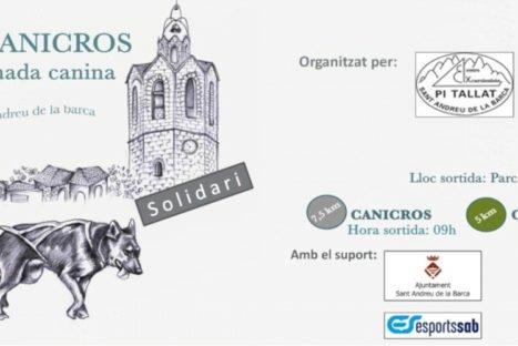 3ª edició del canicròs solidari Pi Tallat